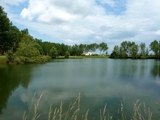 Enjoy the wildlife, Flora and fauna ,and the well stocked carp lake all here at Gone Fishin, Aiguillon